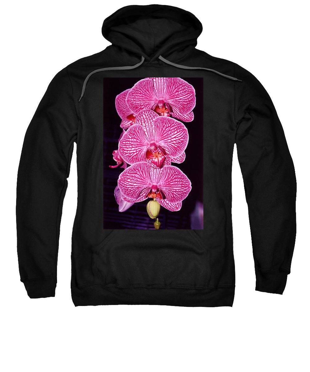 Photography Sweatshirt featuring the photograph Pink Orchids by Susanne Van Hulst