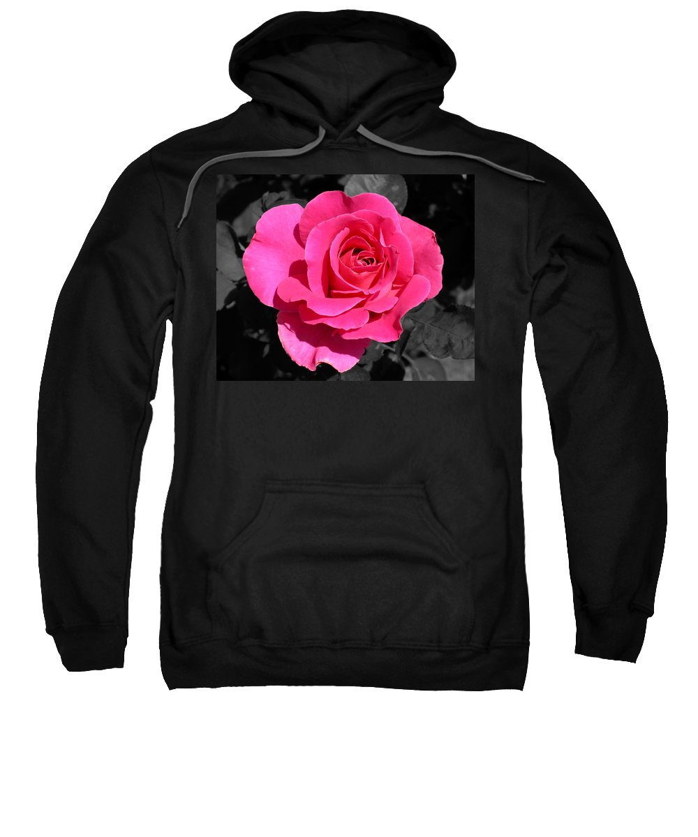 Pink Sweatshirt featuring the photograph Perfect Pink Rose by Michael Bessler