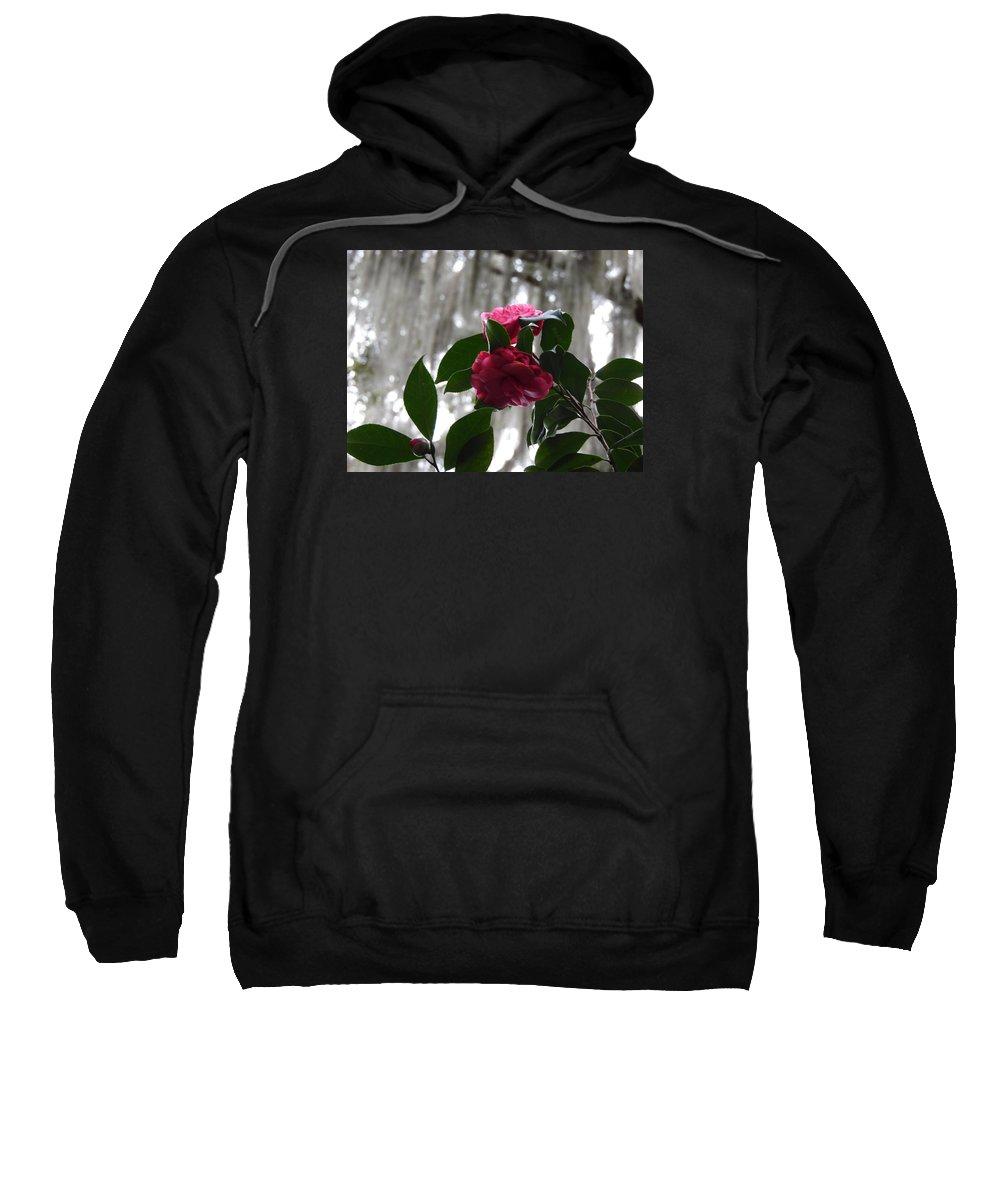 Flower Sweatshirt featuring the photograph Pink by Teresa Palmer