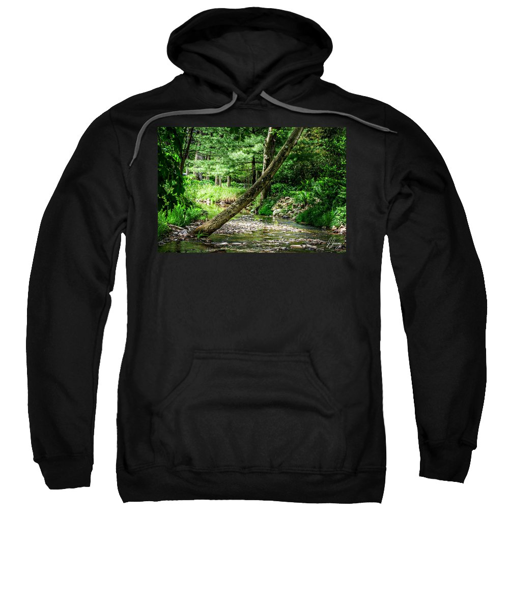 Tree Sweatshirt featuring the photograph Place Of Peace by Joshua Zaring