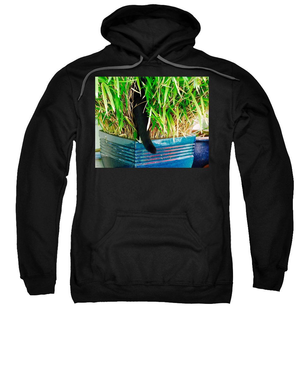 Tuxedo Cat Sweatshirt featuring the photograph Bushwhacking In A Tux by David Coleman
