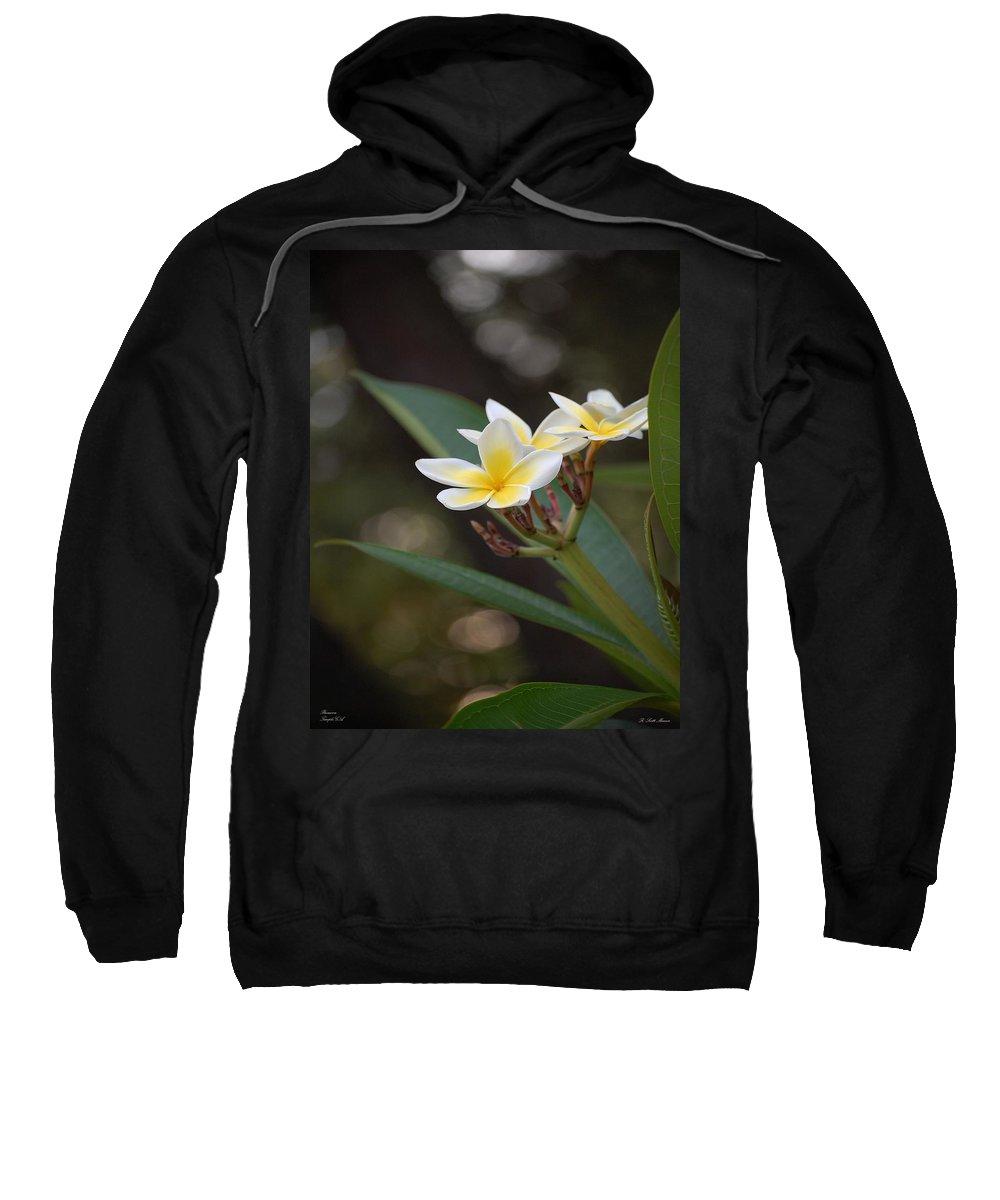 Plumeria Sweatshirt featuring the photograph Plumeria II by Robert Meanor
