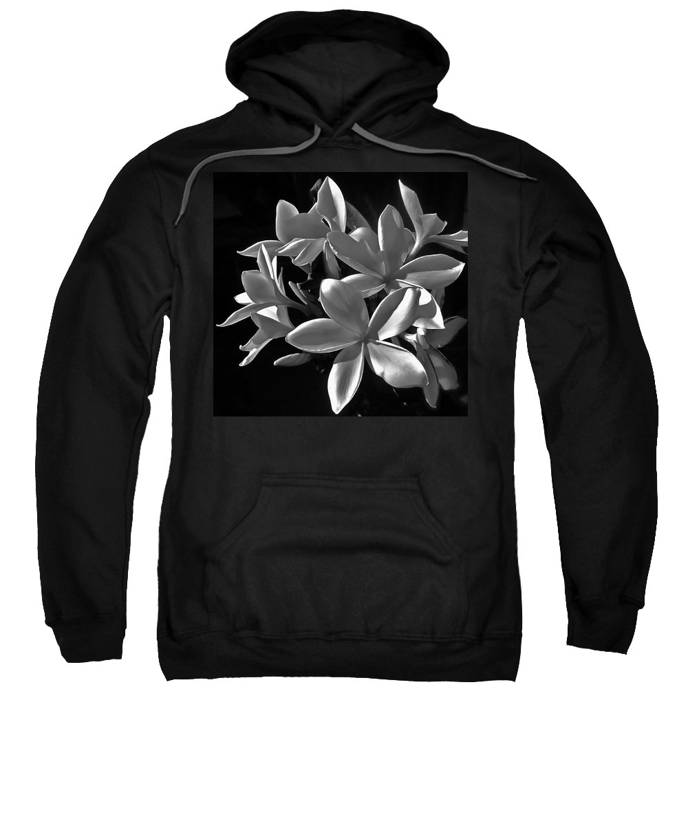 Photograph Of Plumeria Sweatshirt featuring the photograph Plumeria Proper Evening by Gwyn Newcombe