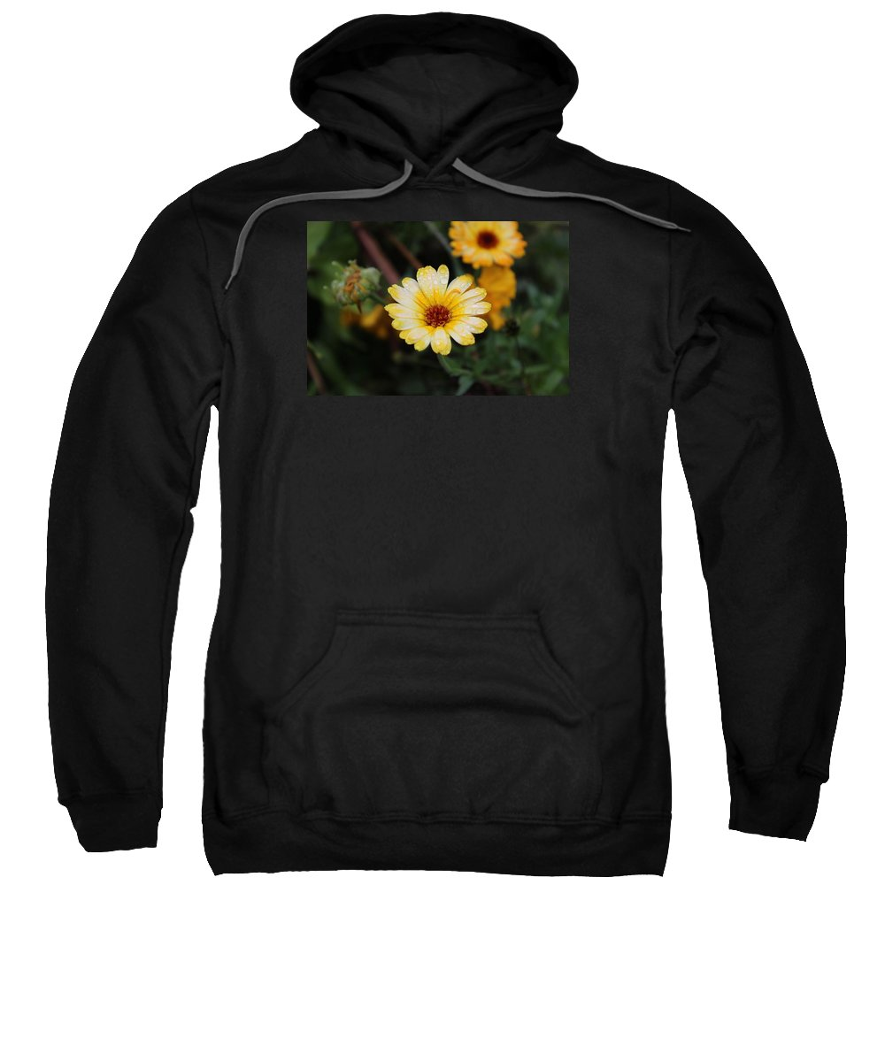 Flowers Sweatshirt featuring the photograph Pocket Full Of Sunshine by Tammy Miller