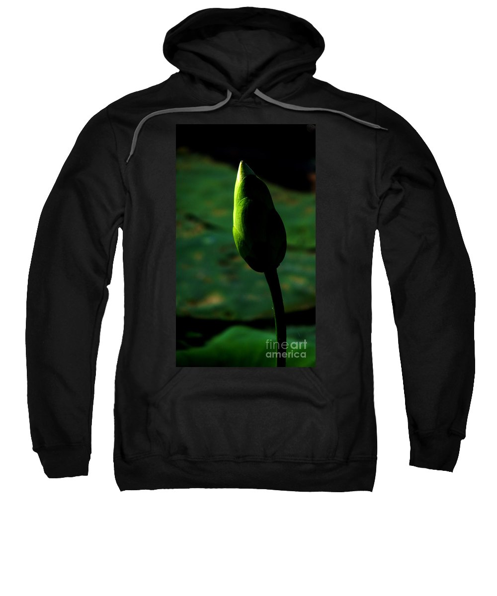 Lotus Sweatshirt featuring the photograph Poised For Greatness by Amanda Barcon