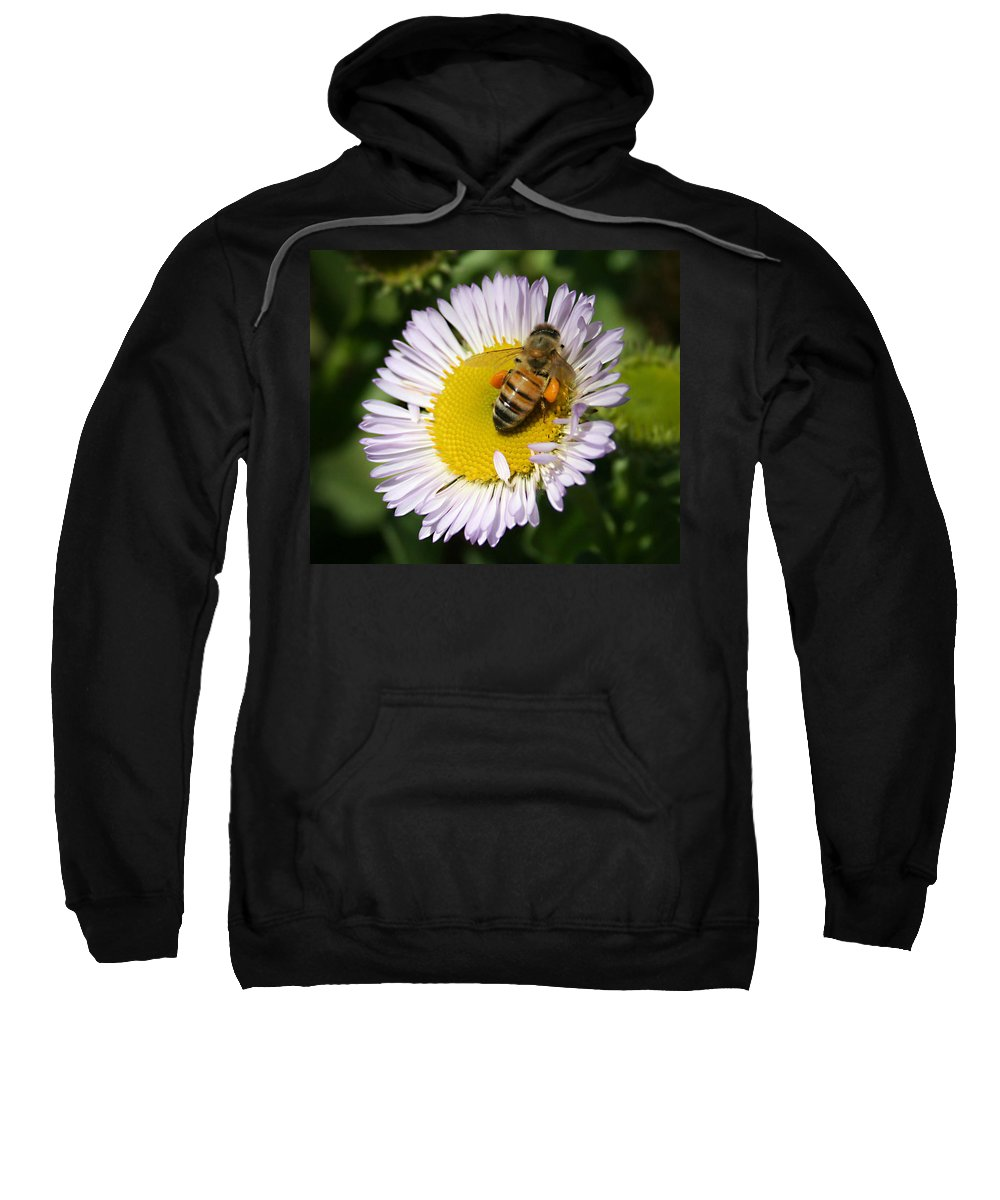 Pollen Harvest Sweatshirt featuring the photograph Pollen Harvest by Ellen Henneke