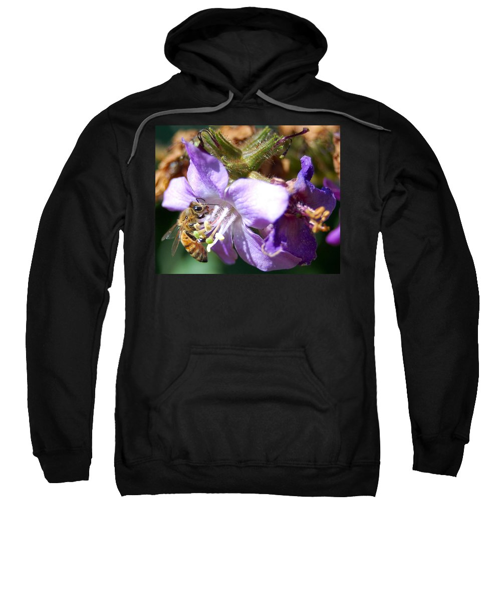 Bee Sweatshirt featuring the photograph Pollinating 1 by Amy Fose