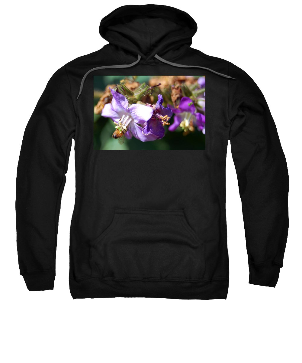 Bee Sweatshirt featuring the photograph Pollinating 3 by Amy Fose