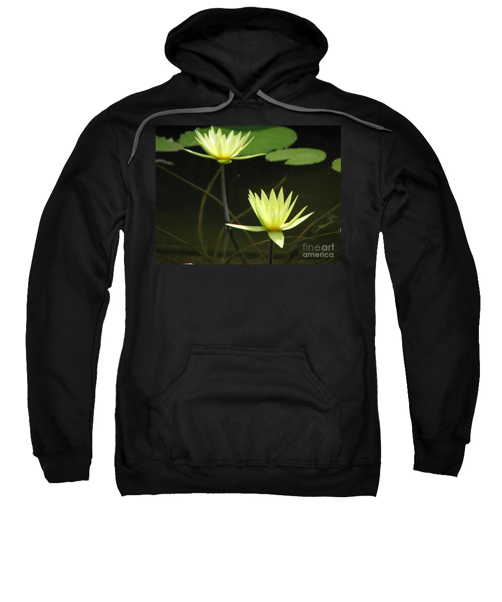 Pond Sweatshirt featuring the photograph Pond by Amanda Barcon