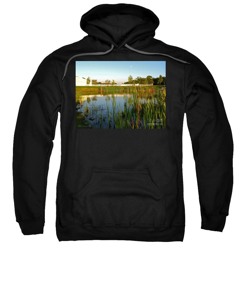 Landscape Sweatshirt featuring the photograph Pond At Sunset by Todd Blanchard