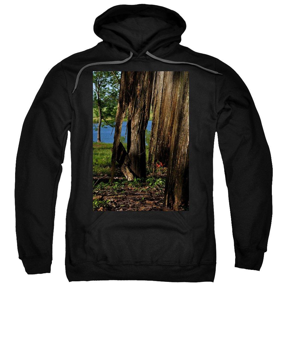Landscape Sweatshirt featuring the photograph Pond Fragments by Rachel Christine Nowicki