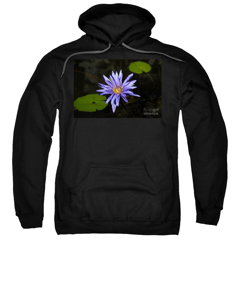 Pond Lily Sweatshirt featuring the photograph Pond Lily by David Lee Thompson