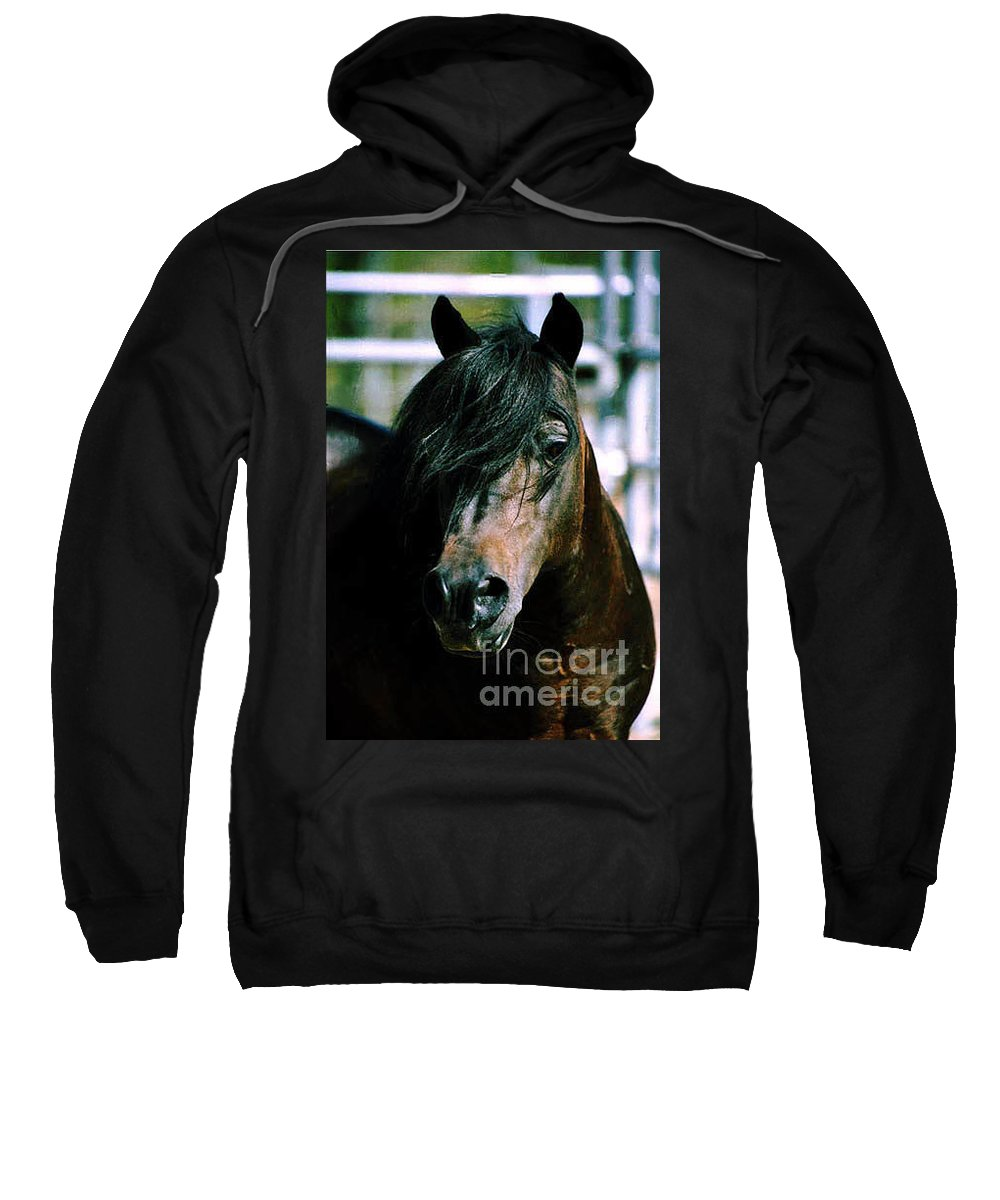 Horse Sweatshirt featuring the photograph Portrait Of His Majesty - The King by Kathy McClure