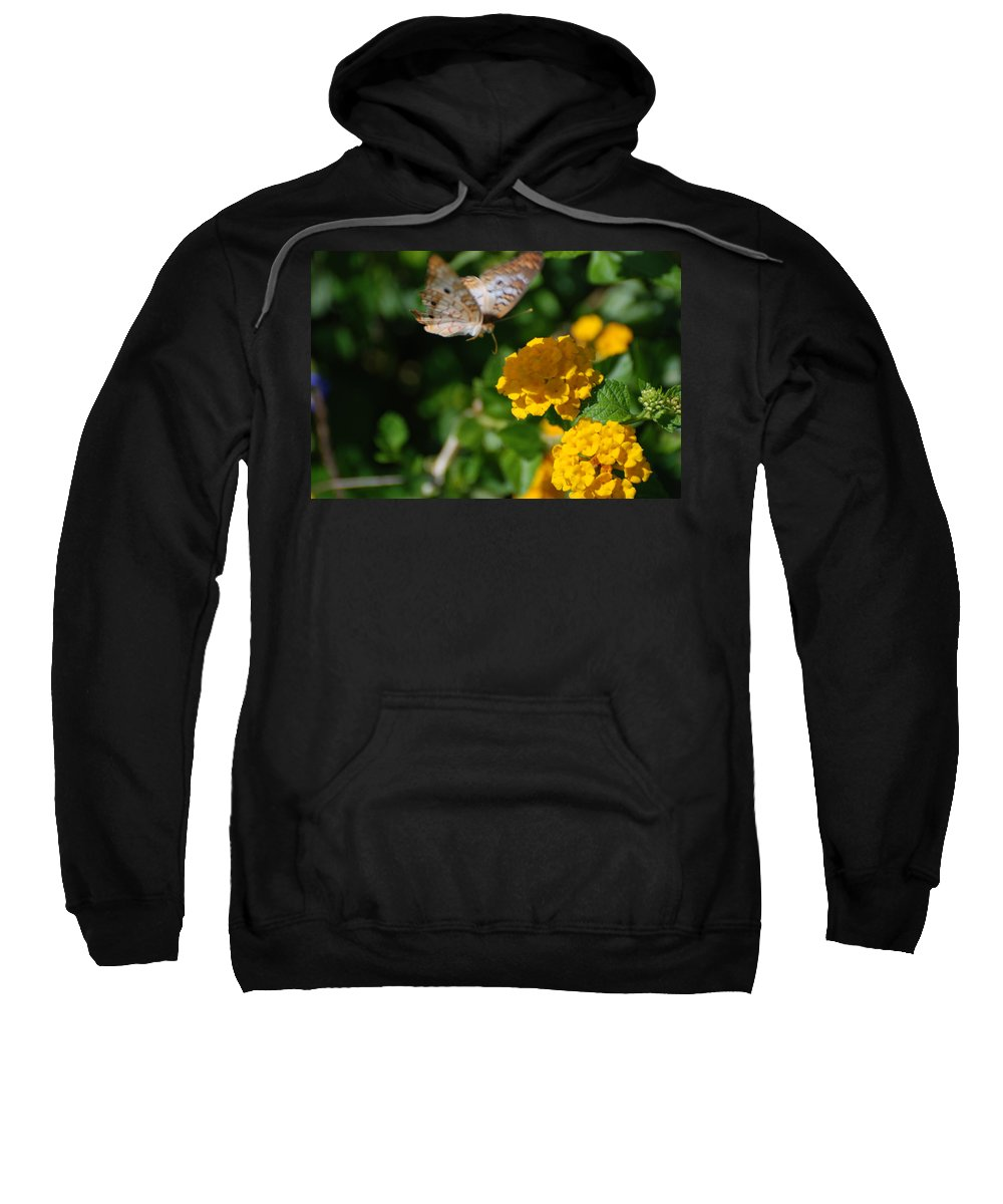 Butterfly Sweatshirt featuring the photograph Pre Landing by Rob Hans