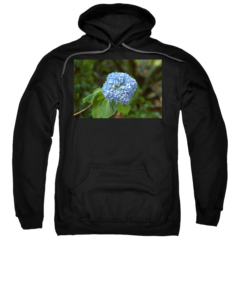 Flower Sweatshirt featuring the photograph Pretty In Blue by Lucy Bounds