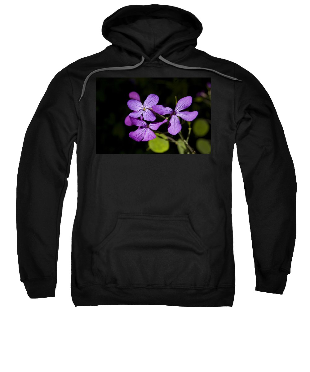 Flowers Sweatshirt featuring the photograph Pretty In Purple by Gary Adkins