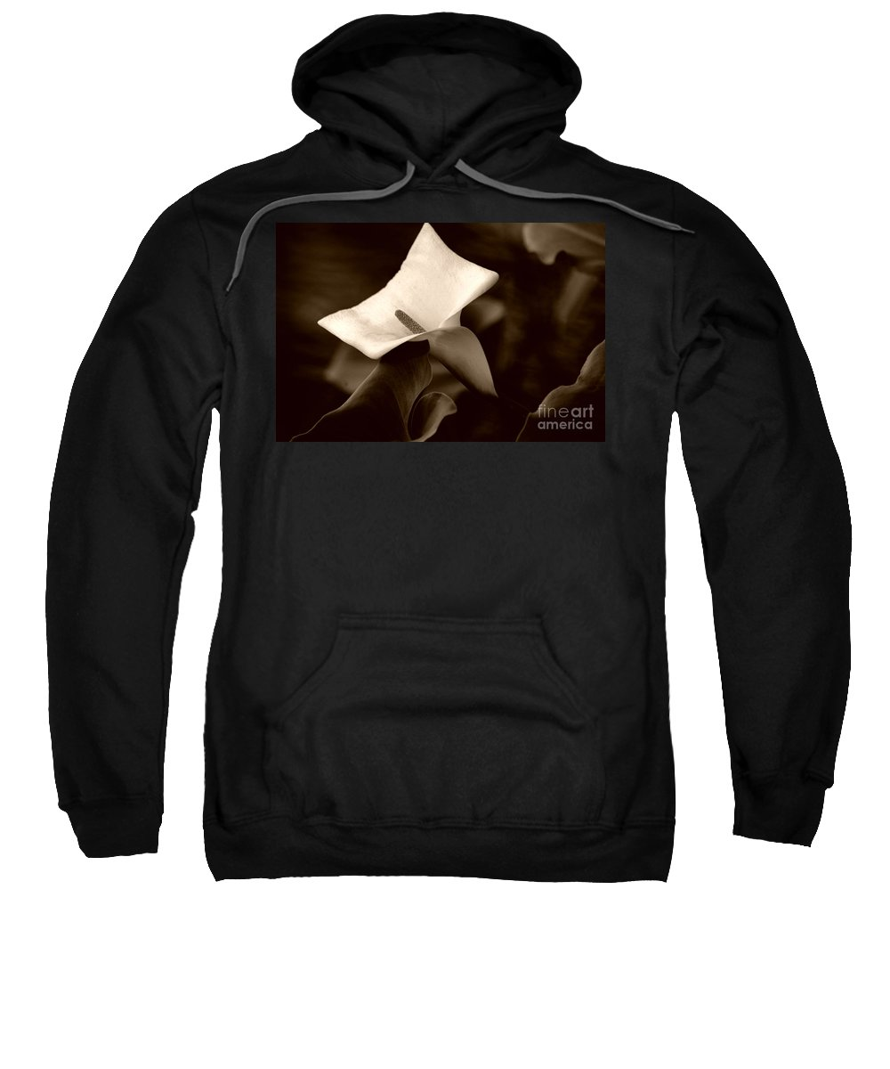 Clay Sweatshirt featuring the photograph Pristine by Clayton Bruster