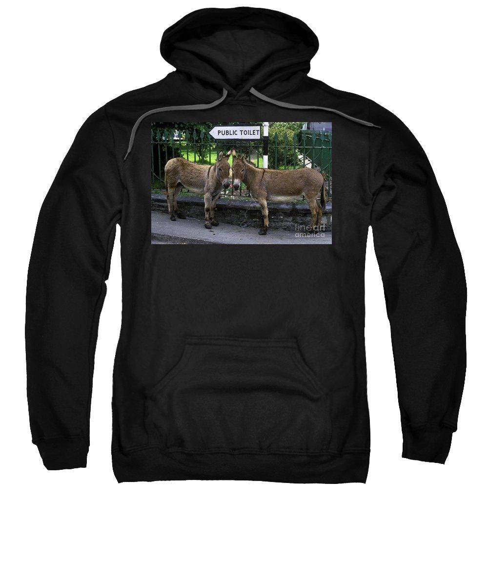 Ireland Sweatshirt featuring the photograph Public Toilet by John Greim