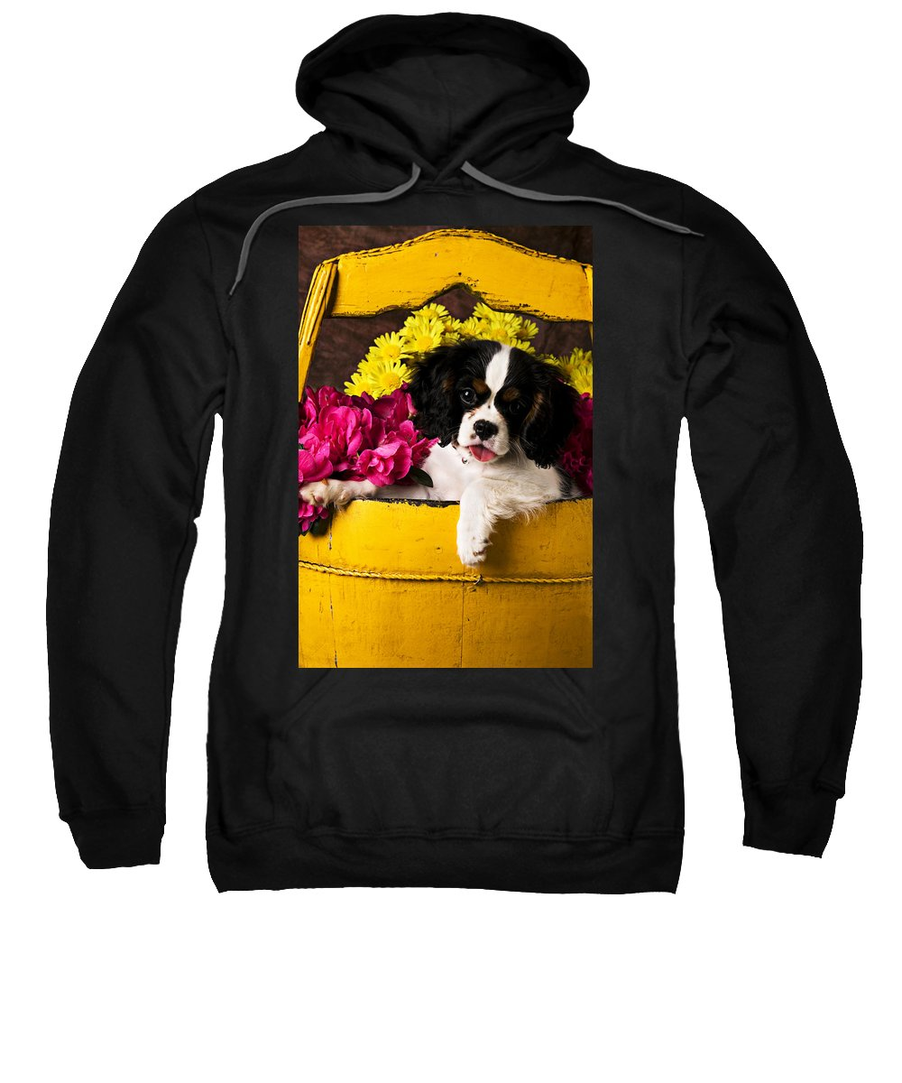 Puppy Dog Cute Doggy Domestic Pup Pet Pedigree Canine Creature Soccer Ball Sweatshirt featuring the photograph Puppy In Yellow Bucket by Garry Gay