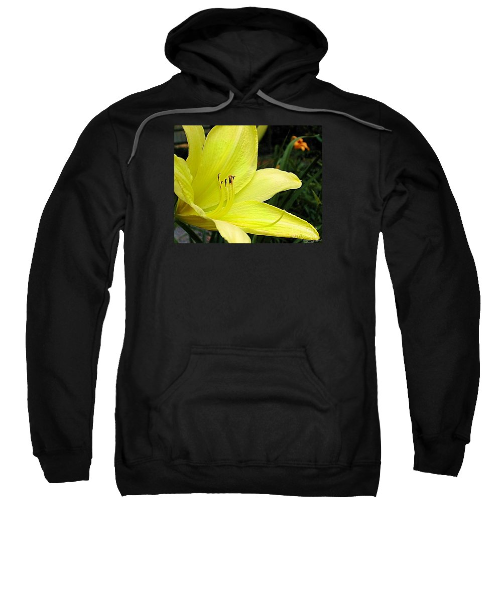 Fine Art Photography Sweatshirt featuring the photograph Pure Sunshine by Patricia Griffin Brett