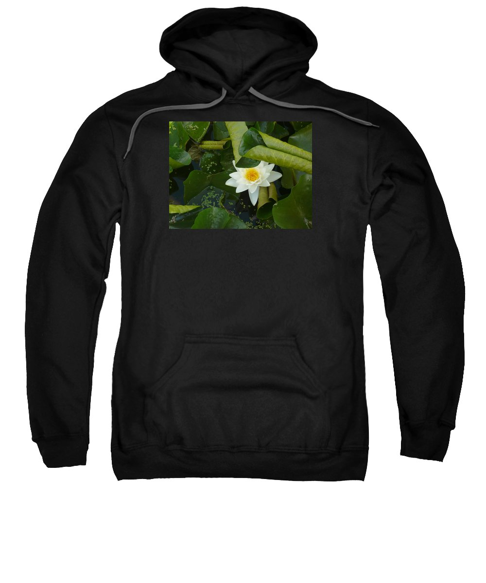 Lily Pond Sweatshirt featuring the photograph Purity by Connie Young