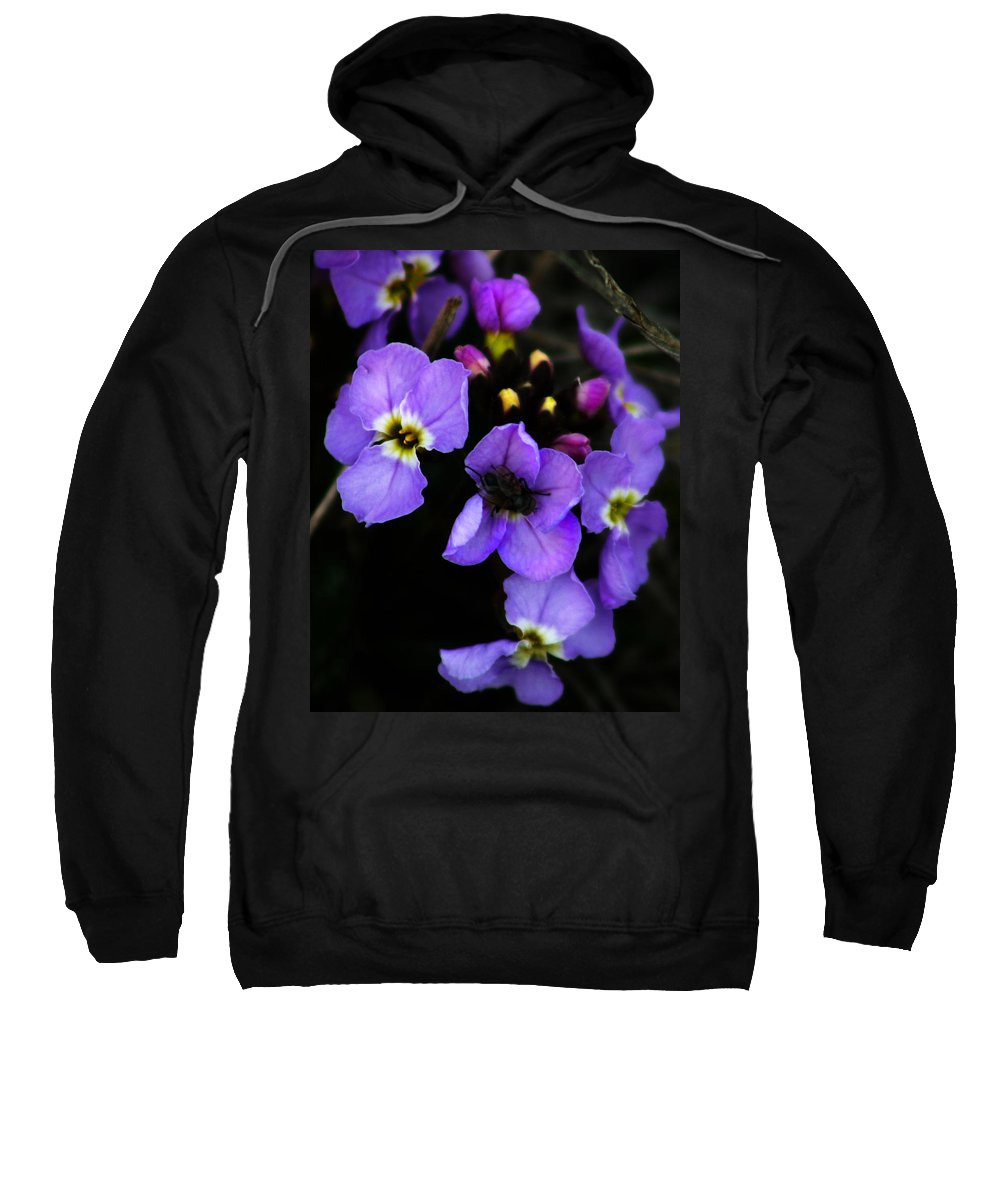 Flowers Sweatshirt featuring the photograph Purple Arctic Wild Flowers by Anthony Jones