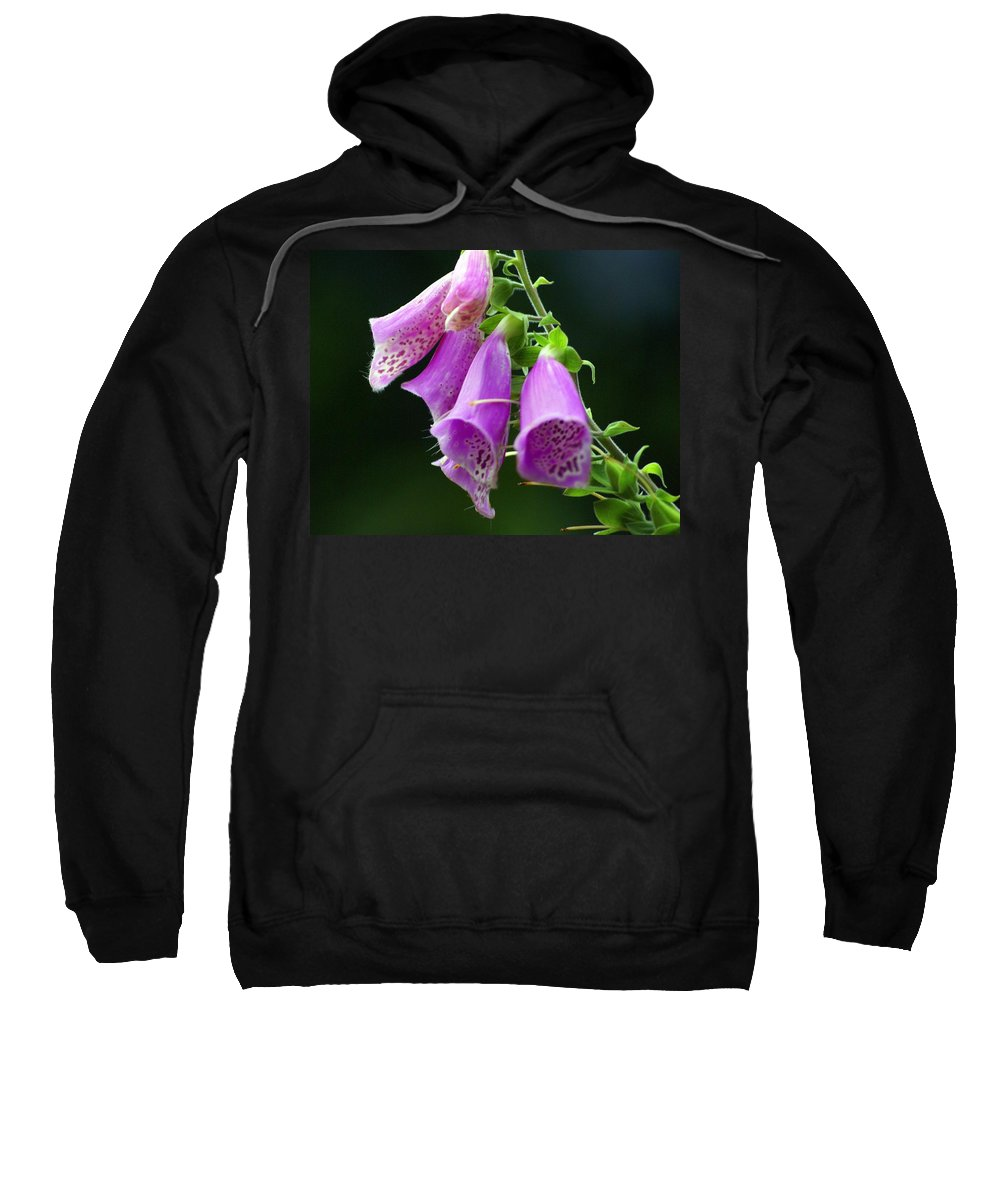 Flowers Sweatshirt featuring the photograph Purple Bells Horizontal by Marty Koch