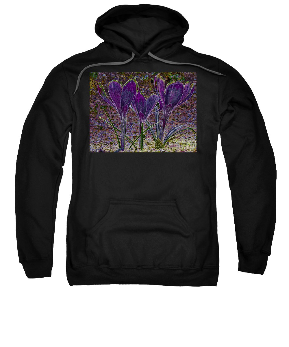 Purple Crocuses Sweatshirt featuring the photograph Purple Crocuses by Sharon Talson