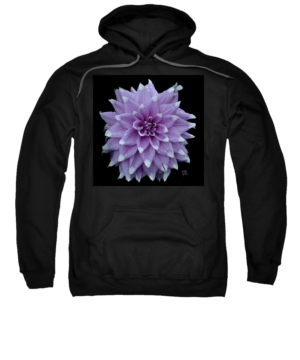 Cutout Sweatshirt featuring the photograph Purple Dahlia Cutout by Shirley Heyn