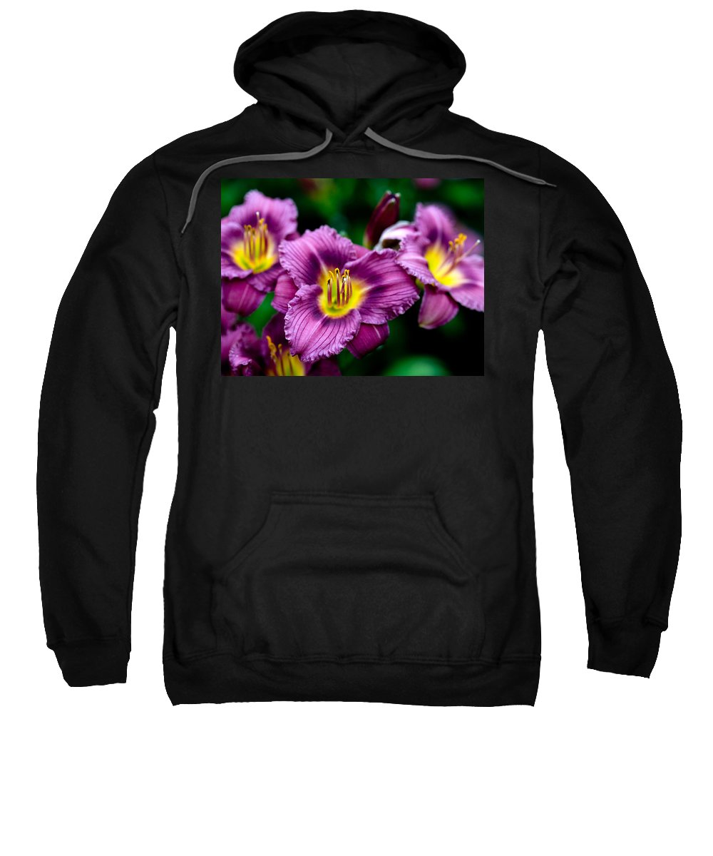 Flower Sweatshirt featuring the photograph Purple Day Lillies by Marilyn Hunt