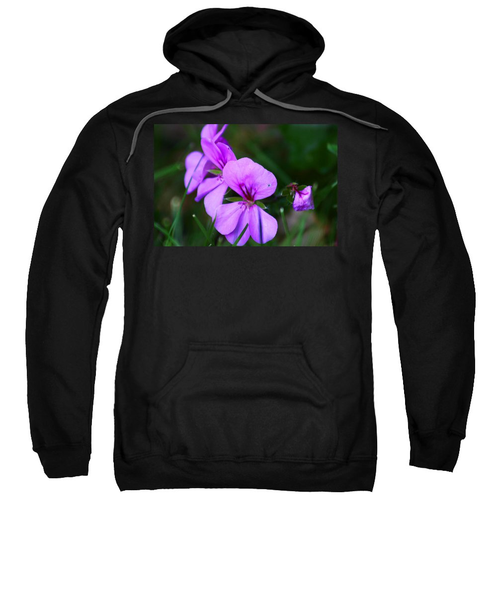 Flowers Sweatshirt featuring the photograph Purple Flowers by Anthony Jones