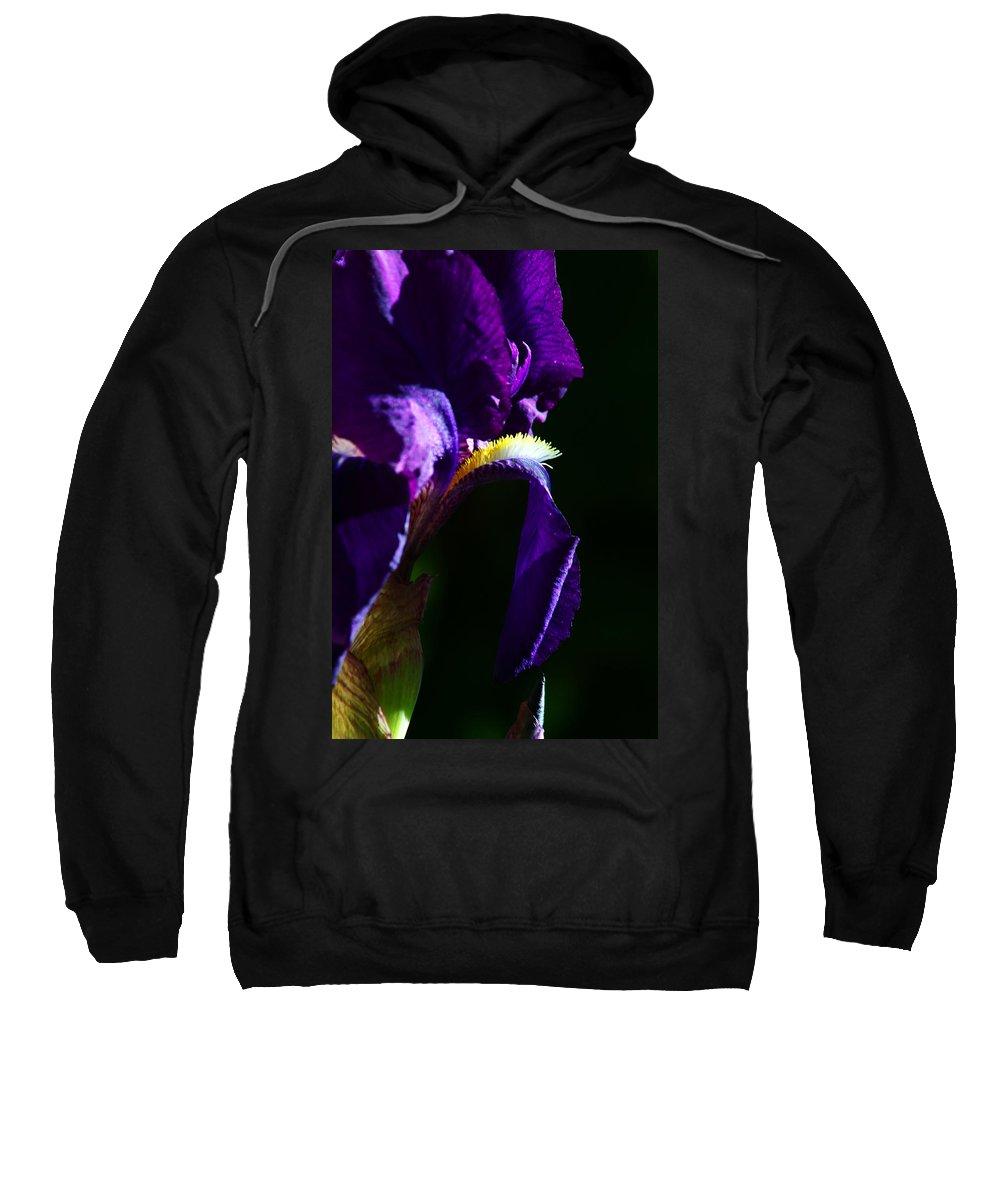 Flower Sweatshirt featuring the photograph Purple Iris 2 by Anthony Jones