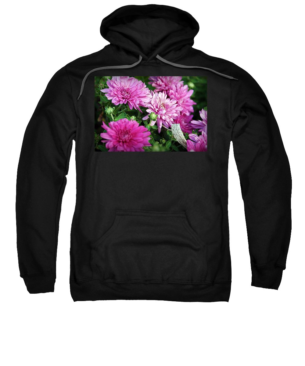 Flowers Sweatshirt featuring the photograph Purple Mums by Cricket Hackmann