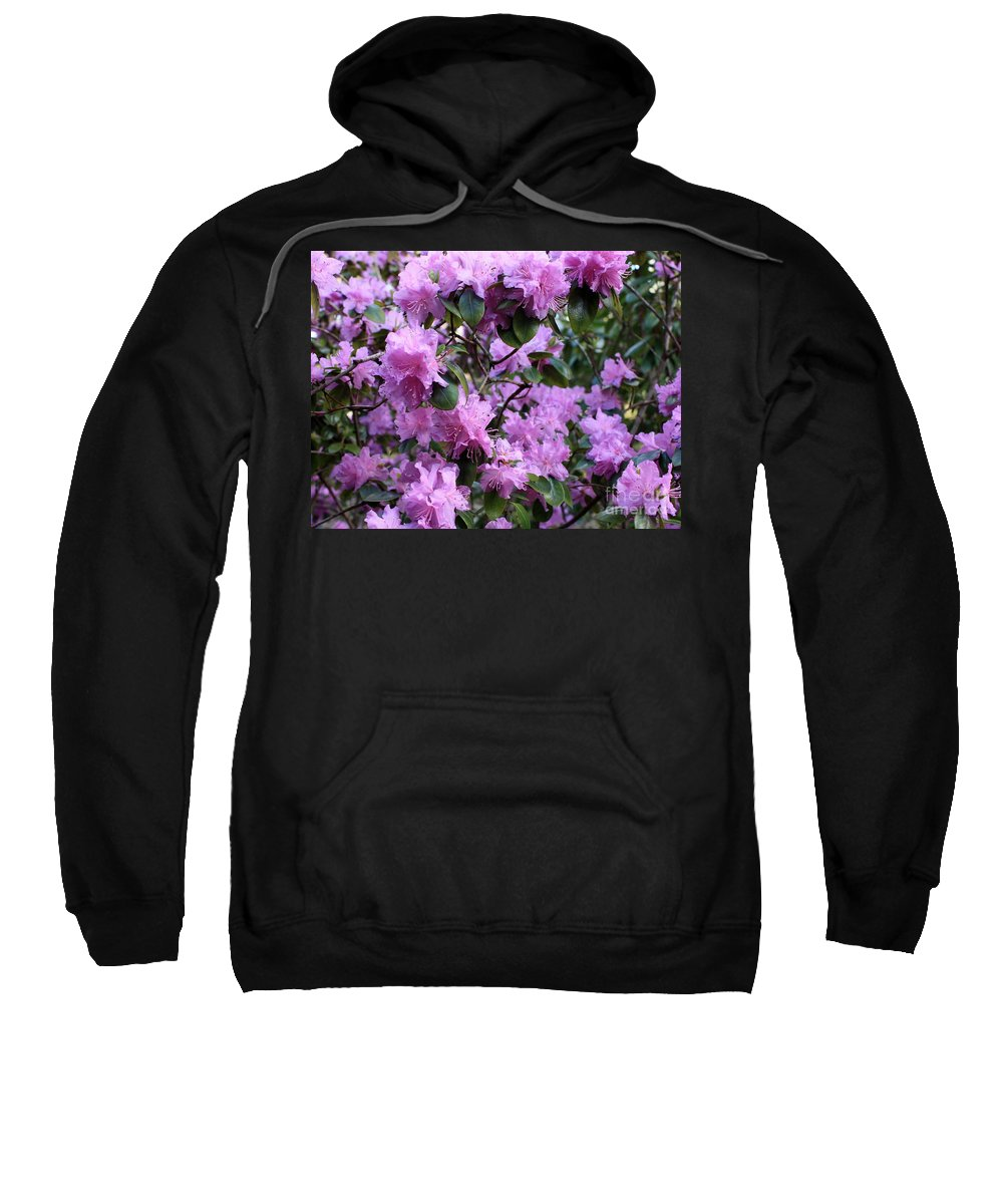 Spring Sweatshirt featuring the photograph Purple Rhododendrons by Carol Groenen