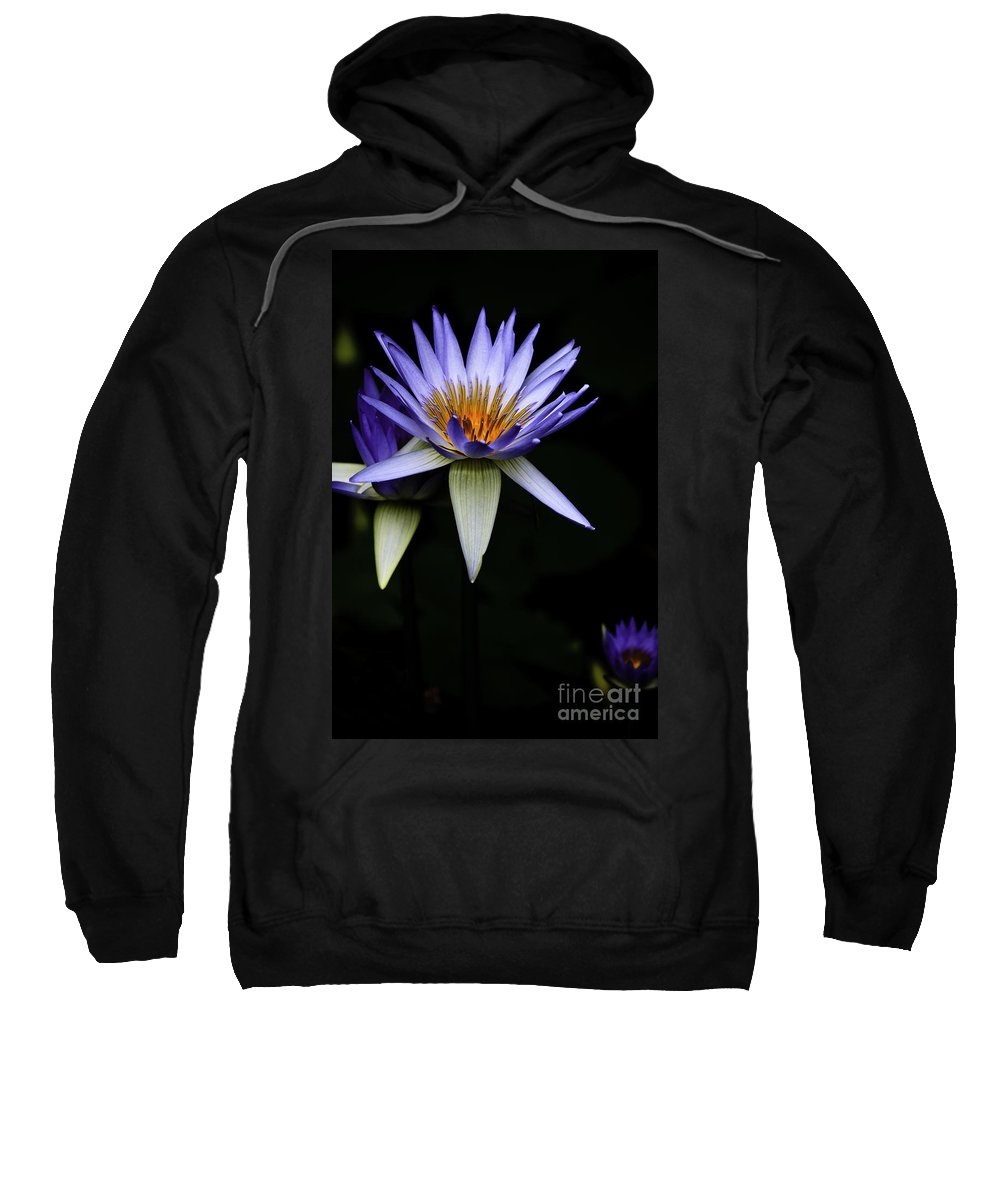 Purple Waterlily Water Lily Flower Flora Sweatshirt featuring the photograph Purple Waterlily by Sheila Smart Fine Art Photography