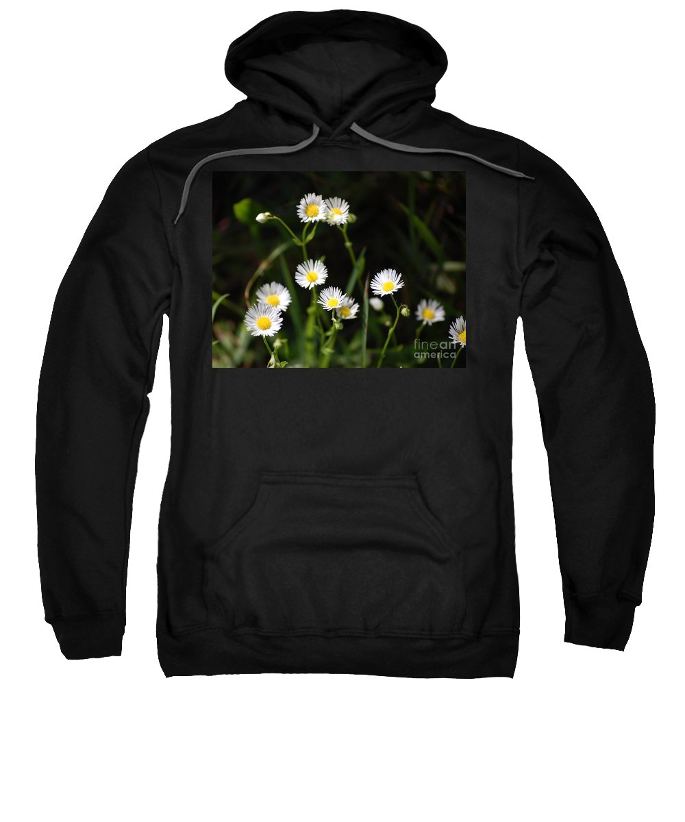 Digital Photo Sweatshirt featuring the photograph Pushing Up..... by David Lane