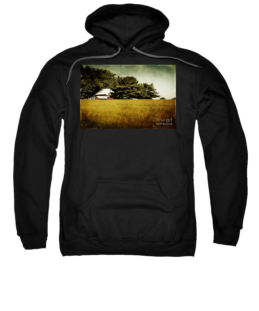 Barn Sweatshirt featuring the photograph Quiet by Lois Bryan