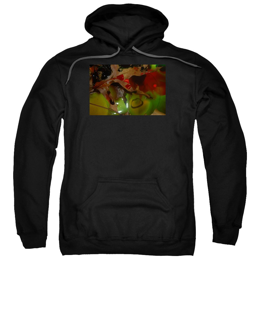 Abstract Sweatshirt featuring the photograph Rainbow Leaves 1 by Alwyn Glasgow