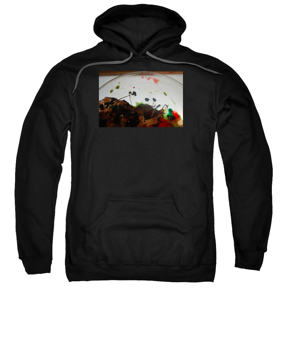 Abstract Sweatshirt featuring the photograph Rainbow Leaves 2 by Alwyn Glasgow