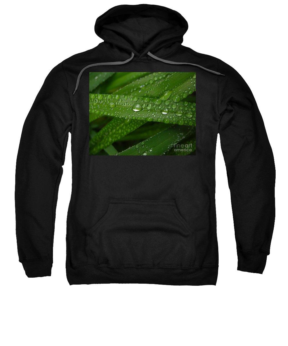 Rain Sweatshirt featuring the photograph Raindrops On Green Leaves by Carol Groenen