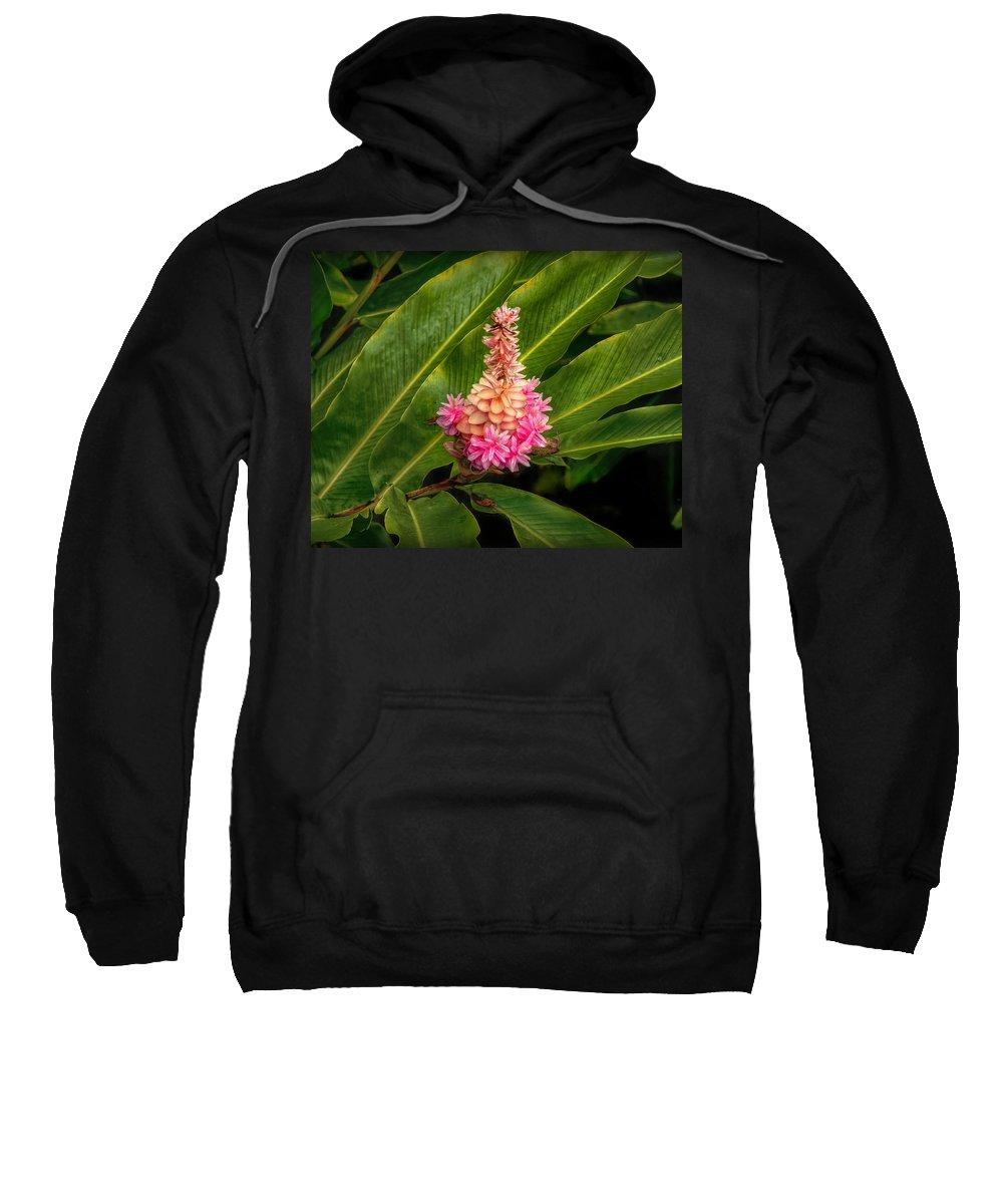 Flowers Sweatshirt featuring the photograph Rainforest Beauty by Hanny Heim