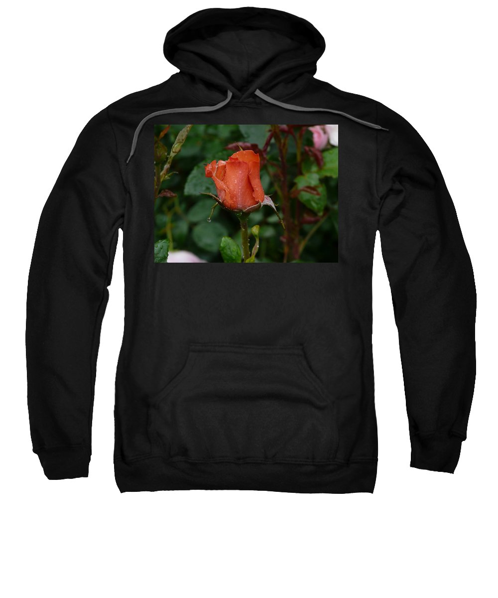 Flower Sweatshirt featuring the photograph Rainy Rose Bud by Valerie Ornstein