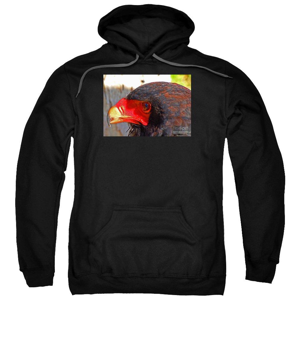 Raptor Sweatshirt featuring the photograph Raptor Head by David Frederick