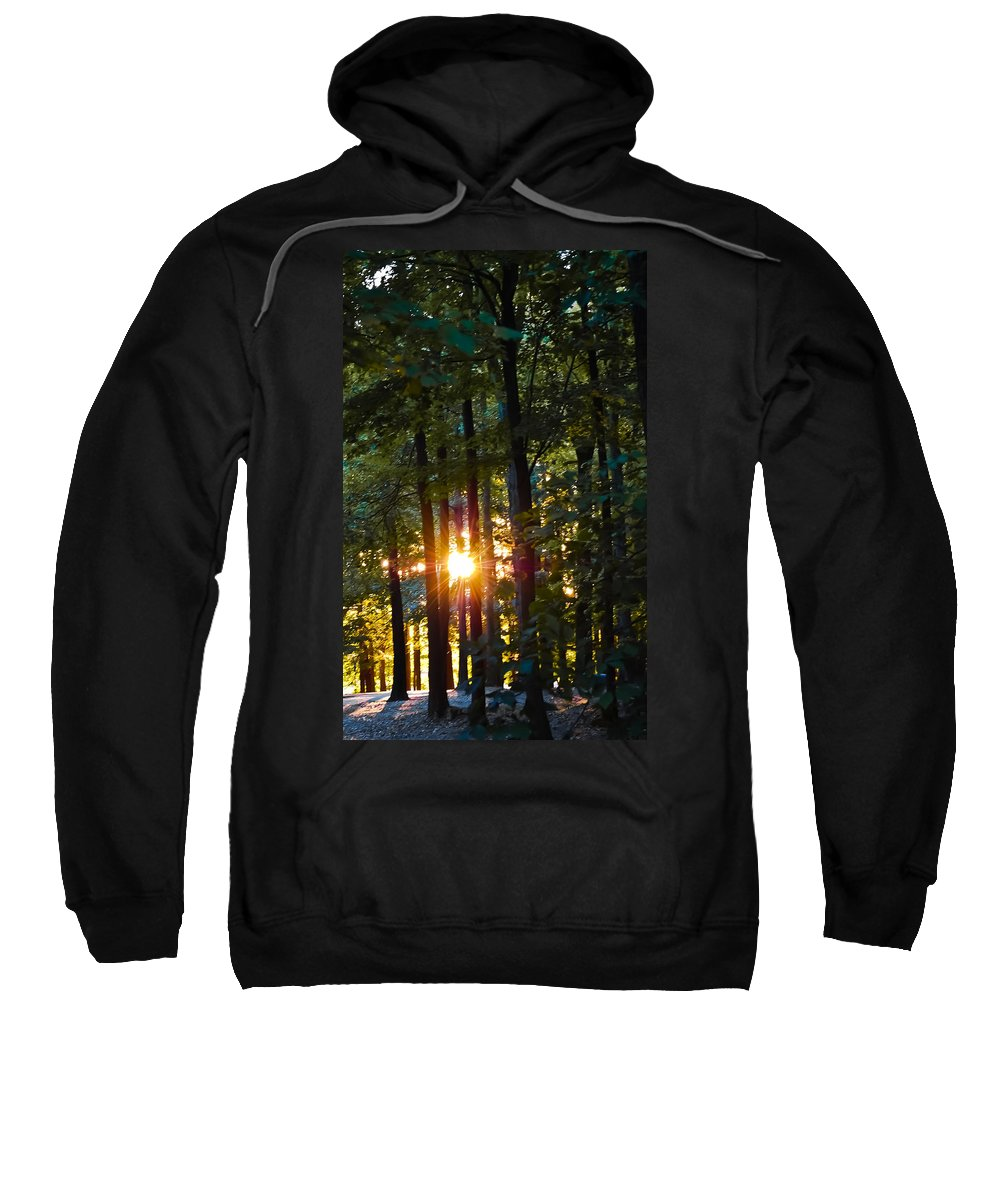 Sun Sweatshirt featuring the digital art Rays Of Dawn by DigiArt Diaries by Vicky B Fuller