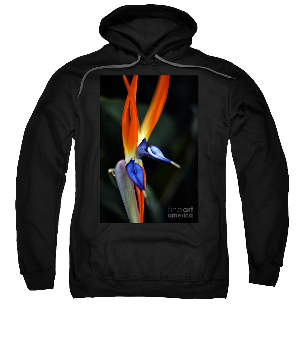Clay Sweatshirt featuring the photograph Ready Aim . . . by Clayton Bruster