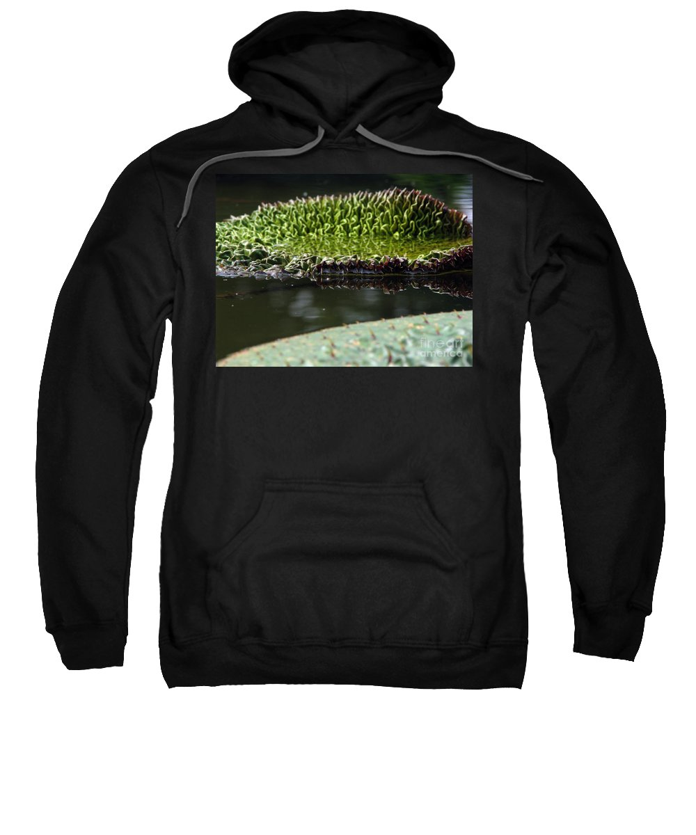 Lillypad Sweatshirt featuring the photograph Ready To Spread by Amanda Barcon