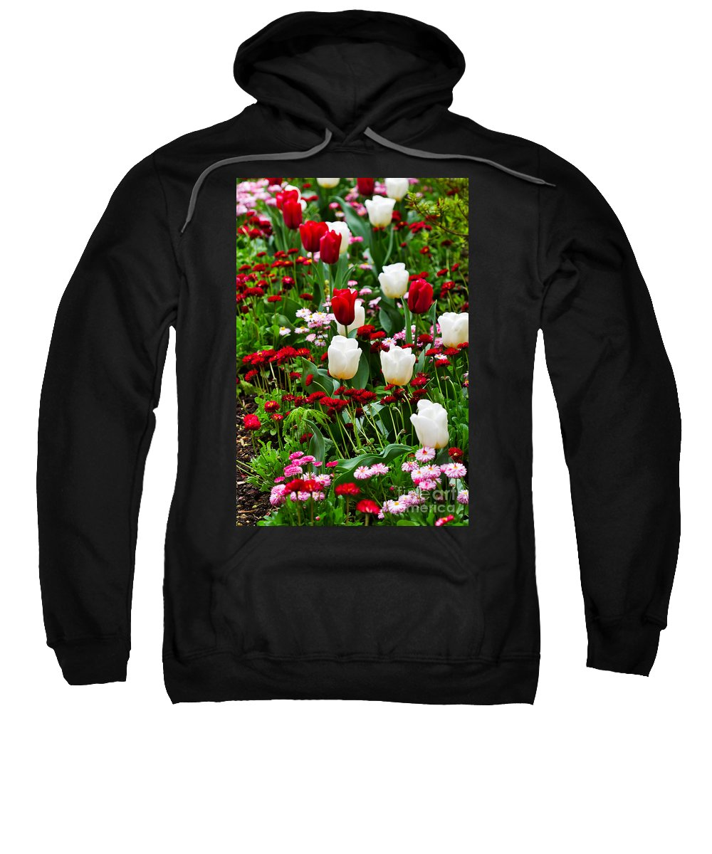 Flower Sweatshirt featuring the photograph Red And White Tulips With Red And Pink English Daisies In Spring by Louise Heusinkveld