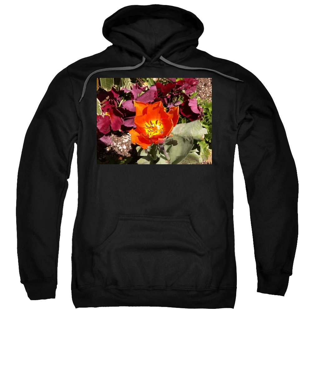Flower Sweatshirt featuring the digital art Red And Yellow Flower by Tim Allen