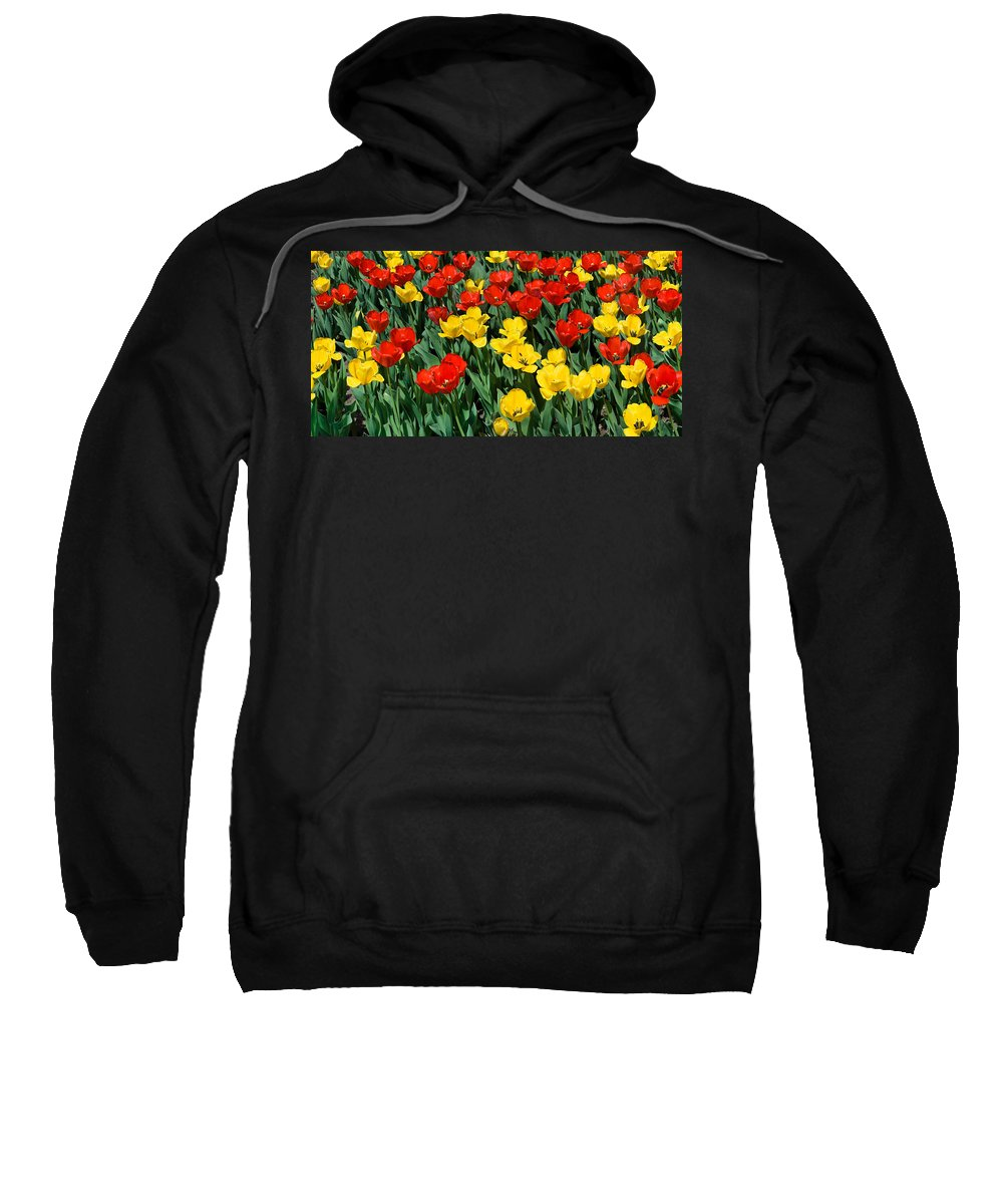 Red Sweatshirt featuring the photograph Red And Yellow Tulips Naperville Illinois by Michael Bessler
