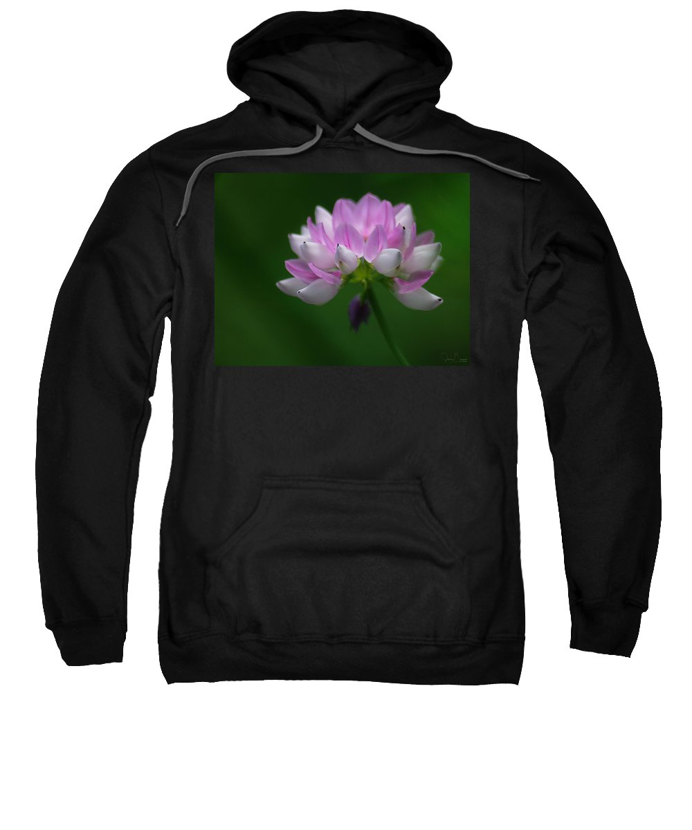 Jenny Gandert Sweatshirt featuring the photograph Red Clover by Jenny Gandert